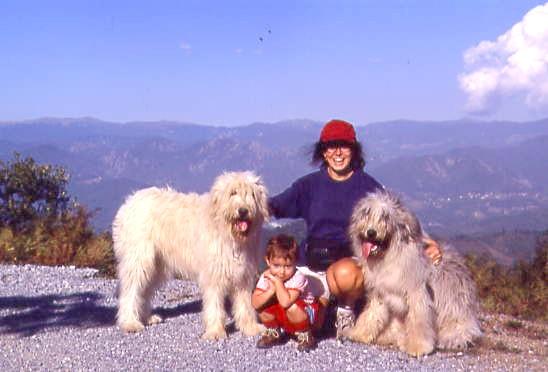 Carattere for Cane da pastore della russia meridionale